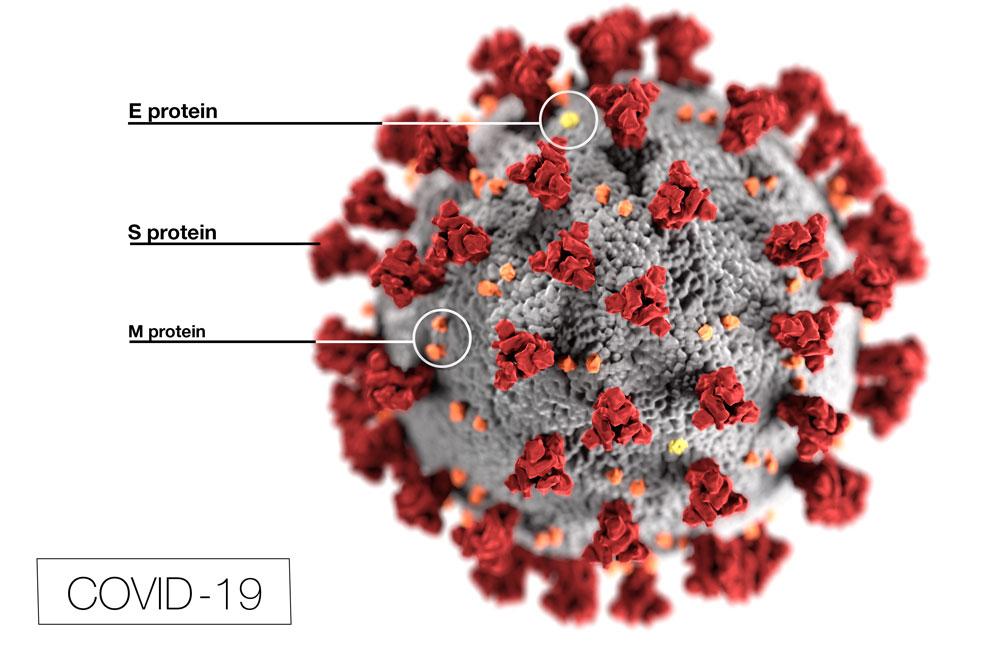 COVID19-virus-image